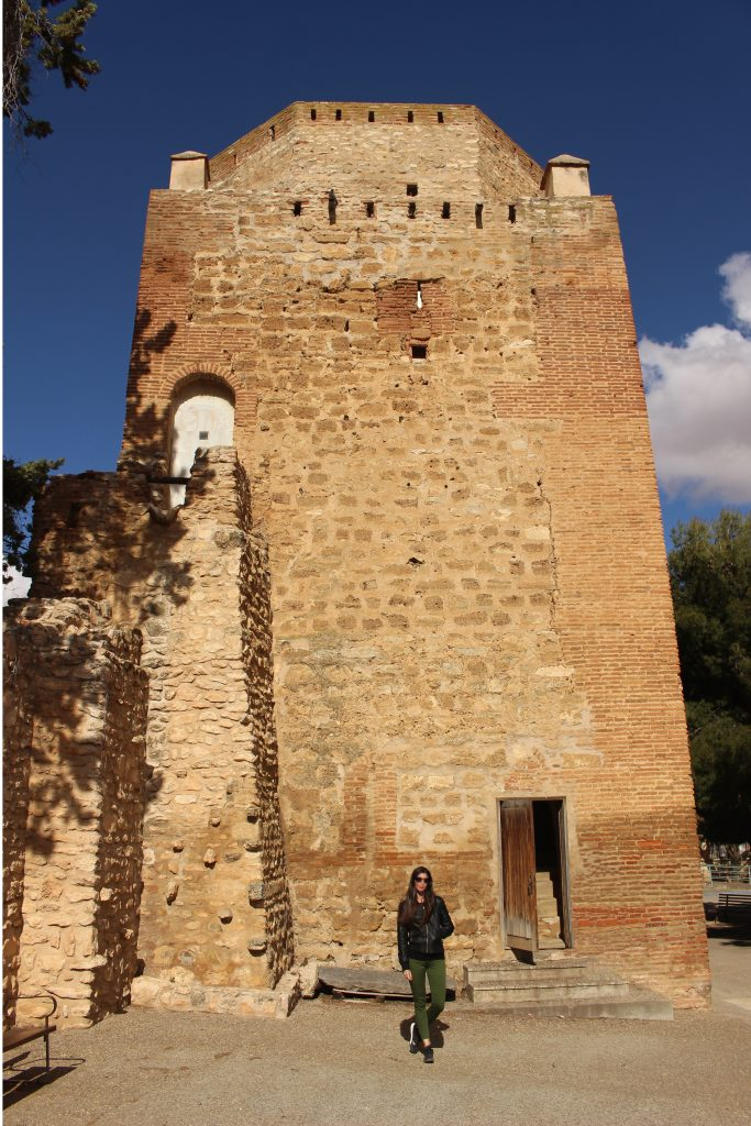 Torreón CAriñena